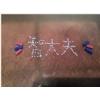 06慢传输试验标志物